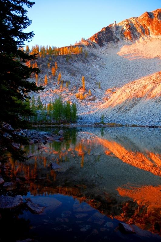 14 Morning Golden Light - Rex Johnson
