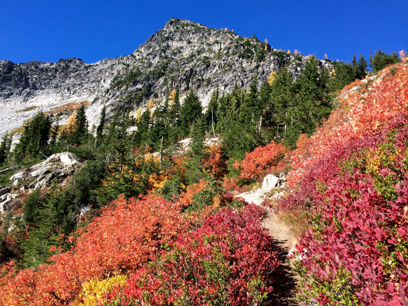 Jed Sires Avalanche of color