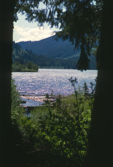 This is the view of the upper (big) Twin Lake from the cabin.  Note the walkway across the outlet.  This walkway houses both a fish trap and holding area.