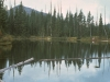 All lakes in intermediate elevations (3000'-5000' west and 4000'-5500' east in the Cascades) that have substantial shoreline and drainage vegetation may be productive.  Do not pass by these lakes with giving them some fishing time.