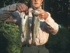 John Thomas holding 14 and 15 inch brook trout from an Indian Heaven Wilderness lake.