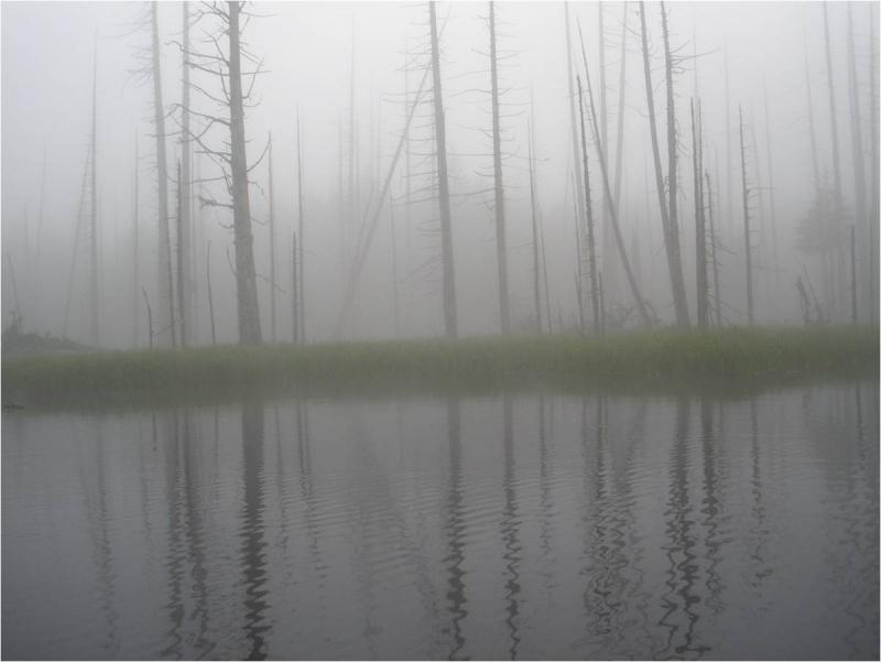 1 Olmstead - Boundary in the Fog