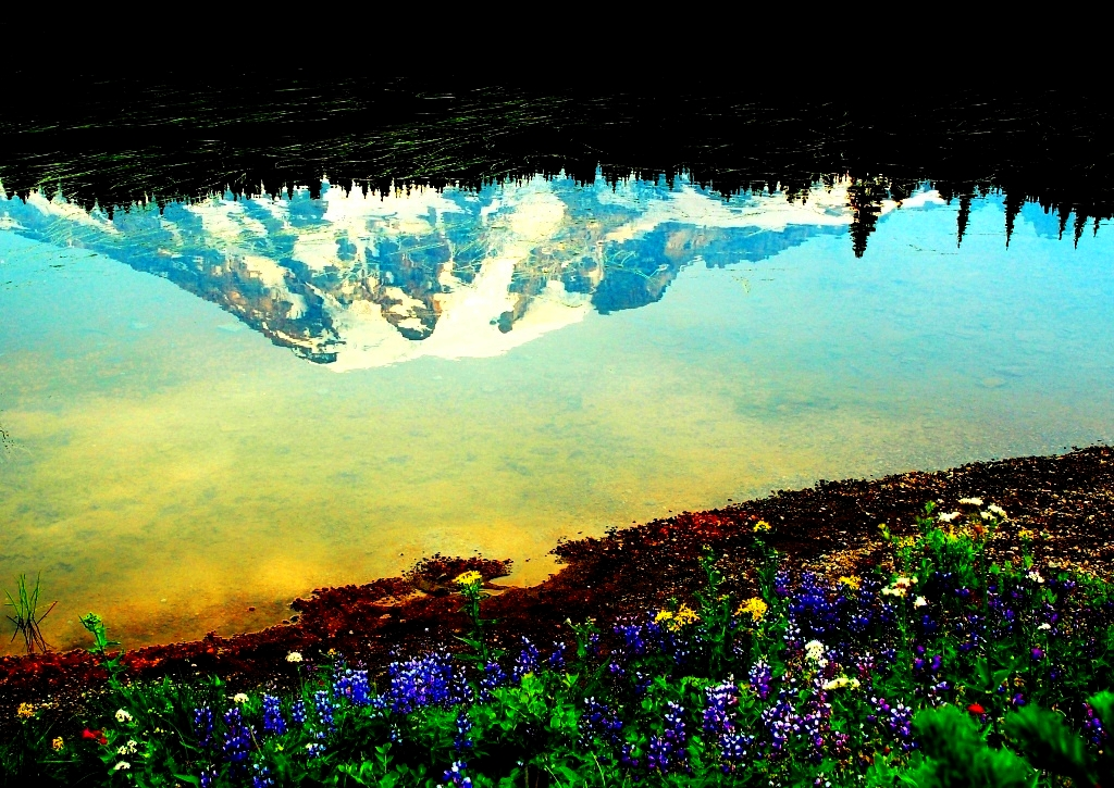 36 Yu - Morning Reflection