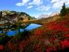 6-winner-Larabee-Mt-Pond-Rich-O_connell
