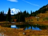 34-Rex-Johnson-Great-View-with-Fall-Colors